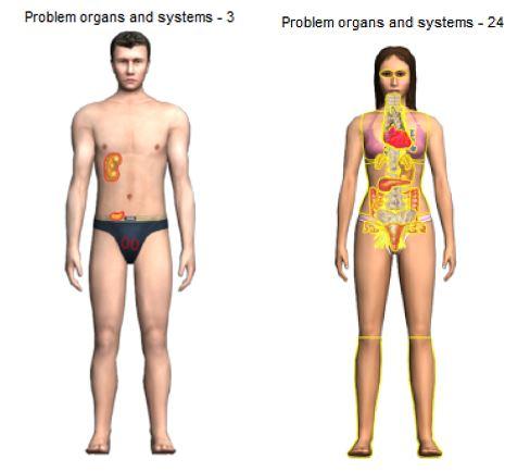 crownscopy-cosmoenergetics.gr-organs image