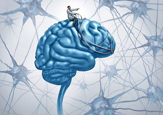brain-harness