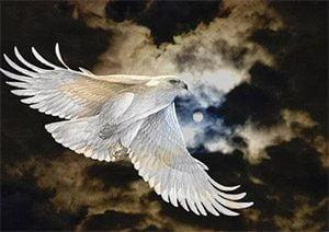 cosmoenergetics_training 4th block white eagle image